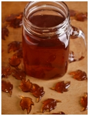 make-fresh-apple-cider-bigthumb